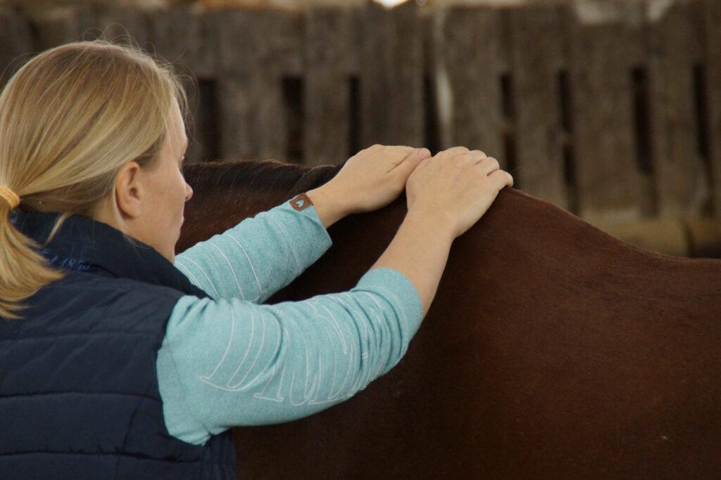 Chiropraktik Pferd2