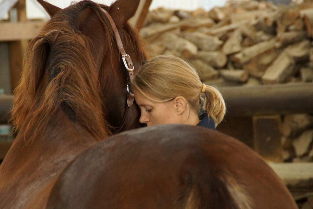 proBalance Pferd