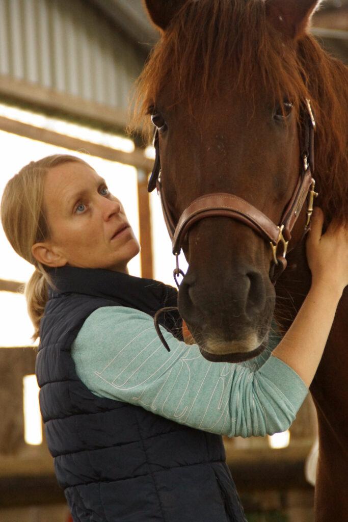 proBalance Untersuchung Pferd4