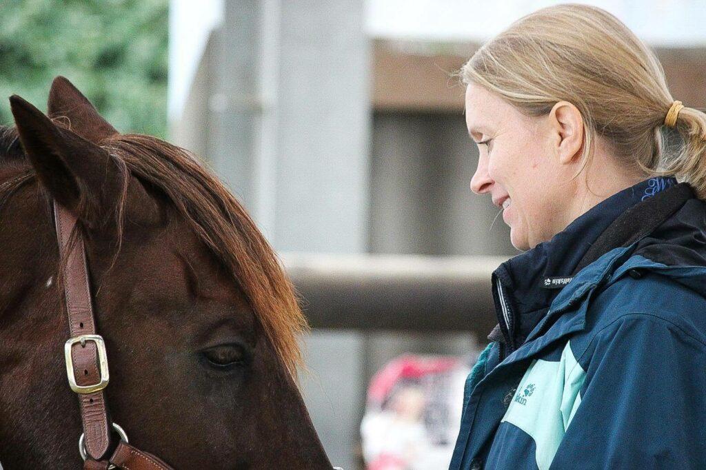 proBalance Untersuchung Pferd2